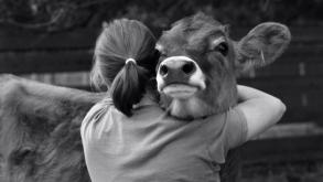 Por que comemorar o Dia do Veganismo?