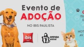 Hotel Ibis Paulista sedia evento de adoção de pets