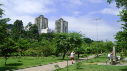 Prefeitura de São Paulo realiza pesquisa sobre parques municipais