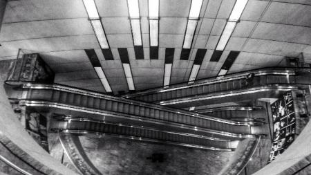 Arquitetura em contraste: um ensaio fotográfico sobre São Paulo