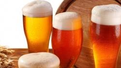 Festival de cerveja artesanal agita Santana neste fim de semana