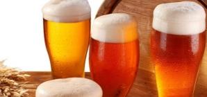 Av. Faria Lima recebe festival de cerveja de 12 a 16 de dezembro