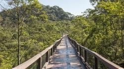 Conheça o Parque Ecológico Imigrantes, parque suspenso de SP