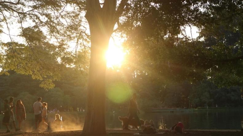Parque Ibirapuera lança plataforma exclusiva para frequentadores