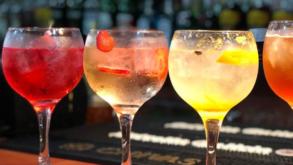 Viva o Gin Tônica! Conheça os melhores bares de Gin Tônica de SP