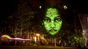 Árvores terão vida na Av. Paulista neste fim de semana