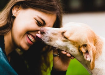 Caminhada beneficente pela causa animal