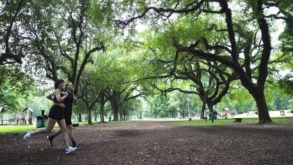 Parque Villa Lobos realiza atividades físicas gratuitas aos finais de semana de janeiro