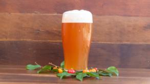 Bares da Vila Clementino se unem para criarem cerveja de pitanga, fruta típica da região