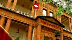 Especial Pinacoteca em casa