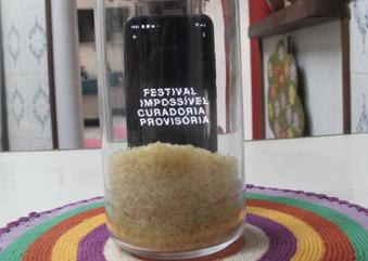 Festival impossível / curadoria provisória