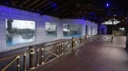 Com medidas de segurança, Aquário de São Paulo reabriu para visitação