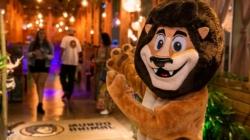 Rede de lanchonetes Mundo Animal abriu primeira unidade em São Paulo