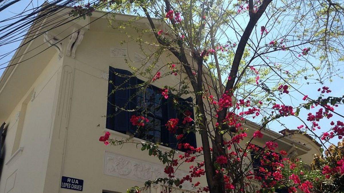 Residência que abriga o museu Casa Mário de Andrade completa 100 anos