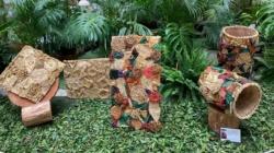 Exposição Saberes Naturais Brasileiros segue até domingo no Centro Cultural Correios