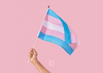Mês da Visibilidade Trans pauta programação de janeiro do Museu da Diversidade Sexual
