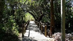 Conheça o Parque Ecológico do Guarapiranga