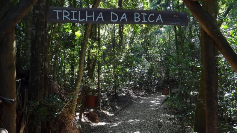 8 trilhas incríveis em São Paulo para se reconectar com a natureza!